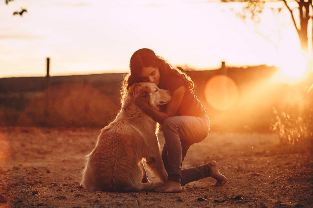 pies przytulenie miłość